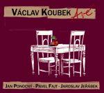 Avé... (Václav Koubek, 2010)