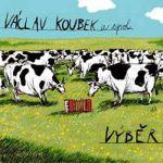 Výběr (Václav Koubek, 2010)